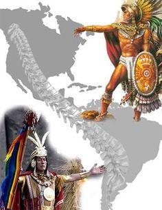 059ef00b9f6d9f18e084394bf4282c7a--condor-the-eagles