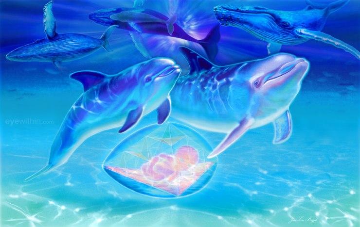 Cetaceans72JeanLuc